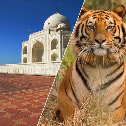 11 Days Delhi Agra Fatehpur-Sikri Ranthambhore Bundi Chittaurgarh Udaipur Ajmer Pushkar Jaipur Tour