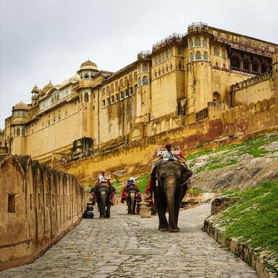 8 Days Jaipur Mandawa Bikaner Jaisalmer Jodhpur Ajmer Pushkar